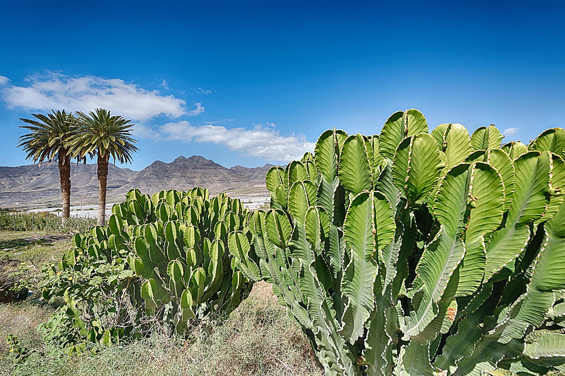 Spanien - Gran Canaria